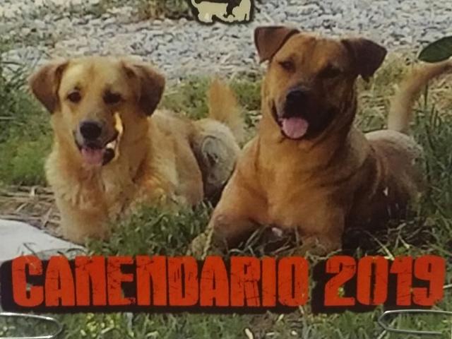 CANENDARIO 2019 ...TUTTA N'ATA STORIA :))))